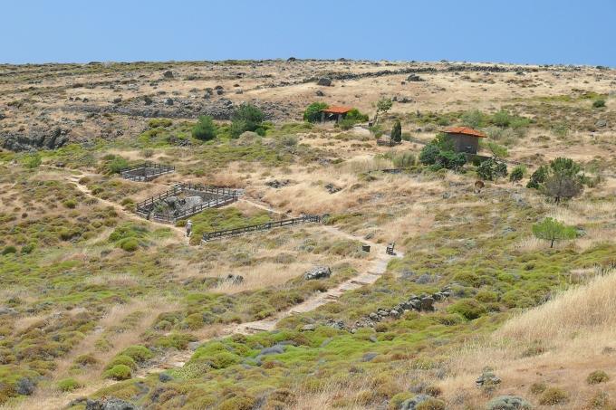 Lesbos (Lesvos) - zkamenělý les