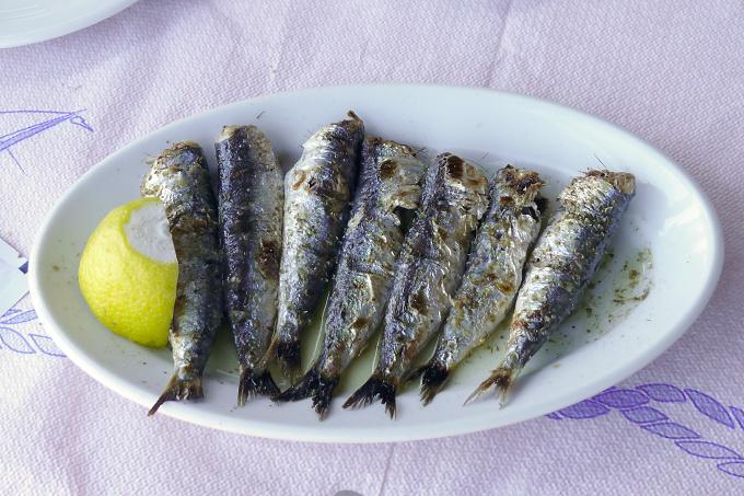 Kaloňské rybičky - Lesbos